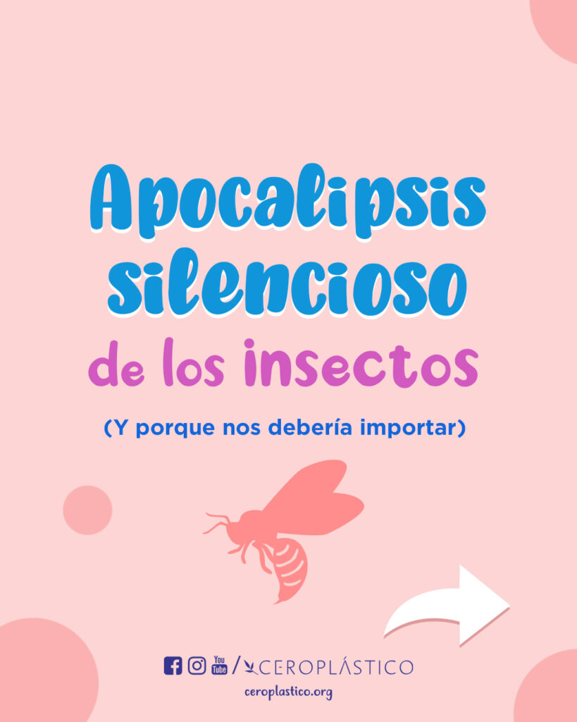 apocalipsis silencioso de los insectos